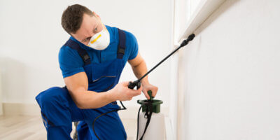 Search engine marketing can help you find new pest control customers.